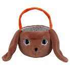 Spritz™ Easter Plush Bunny Basket - Brown