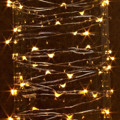 20 ft. LED String Light with Timer - Warm White