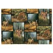 Whitetail Deer Patch Fabric