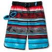 R-Way by ZeroXposur Boys' Striped Swim Trunk with Swim Goggles