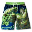 The Hulk Boys' Swim Trunk