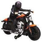 Harley Davidson RC Motorcycle