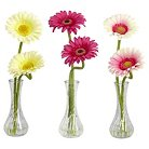 Nearly Natural Gerber Daisy w/Bud Vase (Set of 3)