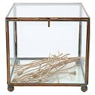 "Square Brass and Glass Display Box - Copper Finish (7"")"