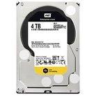 Western Digital 4TB RE SATA 7200 RPM Internal Hard Drive - Silver (WD4000FYYZSP)