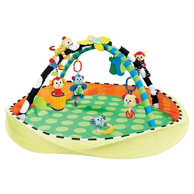 Sassy Activity Gym Multi-colored