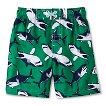 Infant Boys' Shark Swim Trunks - Green
