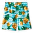 Baby Boys' Pineapple Swim Trunks - Turquoise