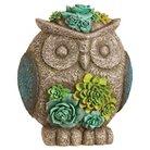 Evergreen Owl Keyhider