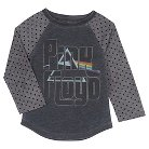 Toddler Girls' Pink Floyd Long Sleeve Graphic T-Shirt - Gray