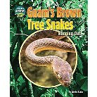 Guam's Brown Tree Snakes ( They Don't Belong: Tracking Invasive Species) (Hardcover)