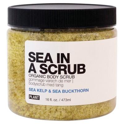 PLANT Sea In A Scrub Organic Body Scrub - 16 oz