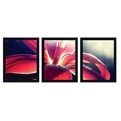 "Trademark Global Beata Czyzowska Young 'Somewhere Over the Rainbow' Multi Frame Art Set (22"")"