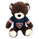 "NFL Chicago Bears Bear - Multi-Colored (14""x17"")"