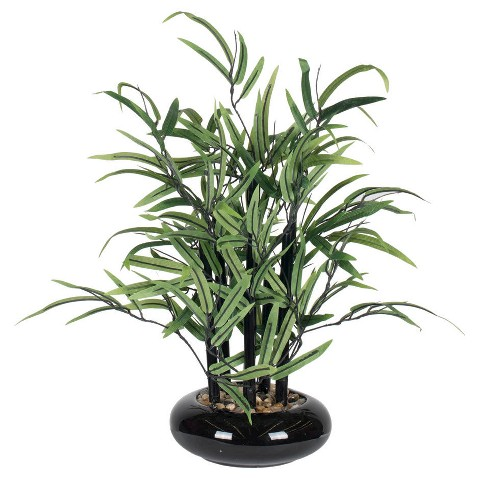 Bamboo Arrangement in Black Ceramic Dish Garden Target