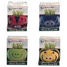 Buzzy Grow Kits Bugs
