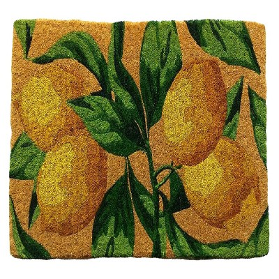 Smith & Hawken® Lemon Coir Doormat
