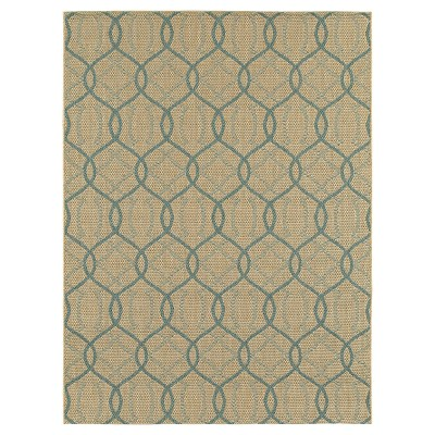 8'x10' Outdoor Rug - Azure Ogee - Smith & Hawken™