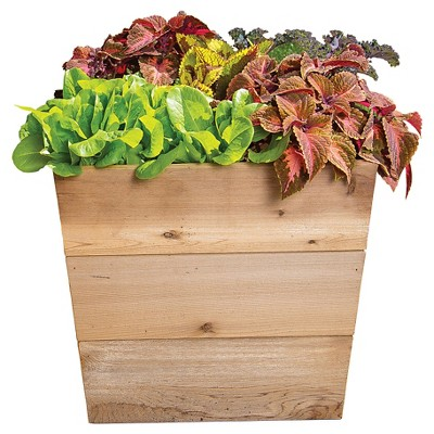 "Red Cedar Floor Planter 18"" - Gronomics"