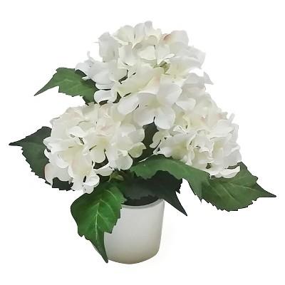 """Threshold™ Small Hydrangea in Ceramic Pot (12"""")"""