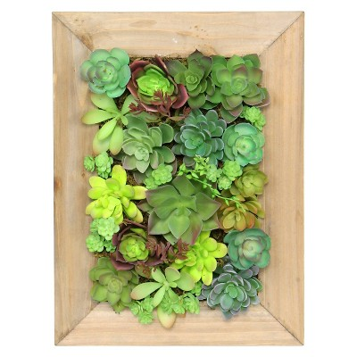 Threshold™ Mixed Succulent in Large Wooden Frame
