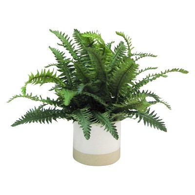 Threshold™ Large Fern in Ceramic Pot