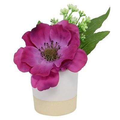 Threshold™ Small Anemone in Ceramic Pot - Purple