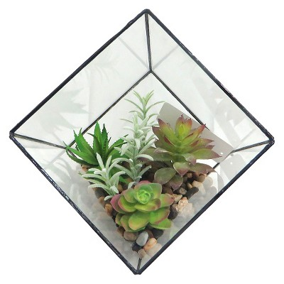 "Threshold™ Succulent in Large Faceted Glass (8.5"")"