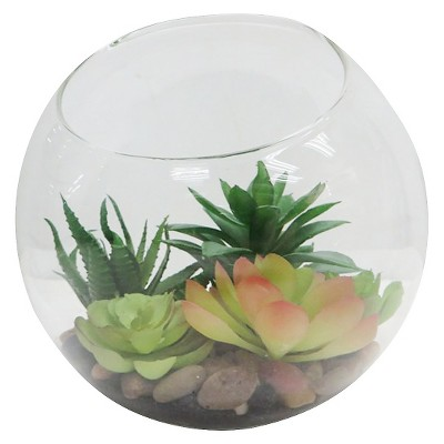 "Threshold™ Succulent In Round Clear Glass Container (6"")"