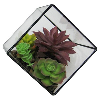 Threshold™ Succulent In Small Faceted Glass