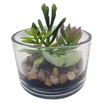 """Threshold™ """"Succulent in Small Clear Glass (4.25"""")"""