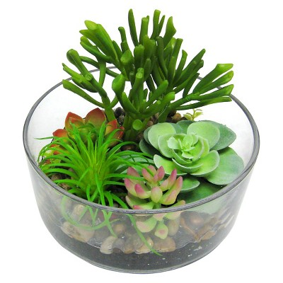 "Threshold™ ""Succulent in Large Clear Glass Container (5.25"")"