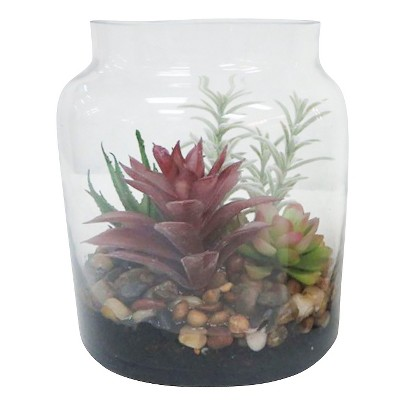 "Threshold™ Succulent in Tall Clear Glass Container (7"")"