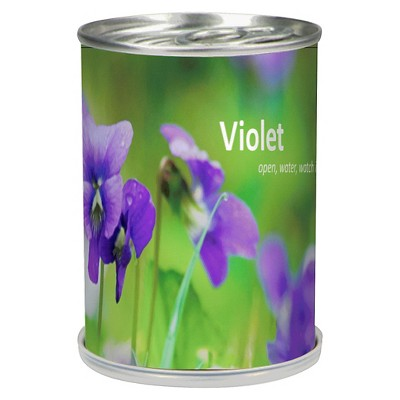 Flowers in a Can Violet