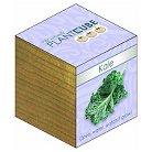 Ecofriendly PlantCube Kale