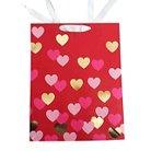 Large Cub Bag - hearts