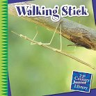 Walking Stick ( 21st Century Junior Library: Creepy Crawly Critters) (Hardcover)