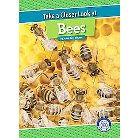 Take a Closer Look at Bees ( Take a Closer Look) (Hardcover)