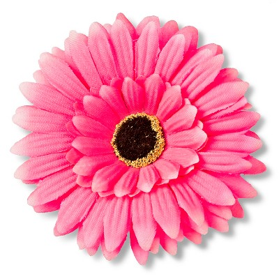 Girls' Faux Daisies Clips/Barrettes - Pink