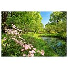 Art.com  Wall Mural -  Park In The Spring