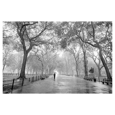Art.com  Wallpaper Mural -  New York City Poet's Walk Central Park by Henri Silberman