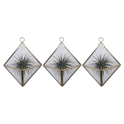 3-Pack Wall Mounted Air Plant Holders -Gold