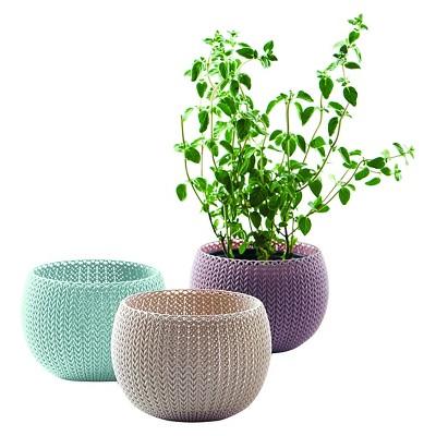 Curver Knit Cozie Planter Trio - Assorted