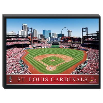 St. Louis Cardinals Stadium Metallic Canvas