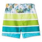 Baby Boys' Stripe with Pineapple Swim Trunk Green 9M - Circo™
