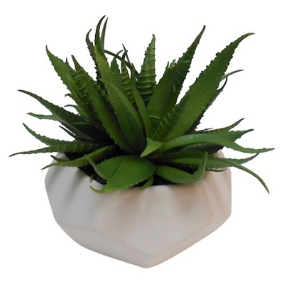 Faceted Mini Succulent Small White - Room Essentials™