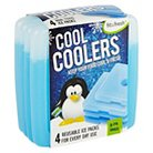 Fit & Fresh Cool Coolers Ice Packs - Set of 4
