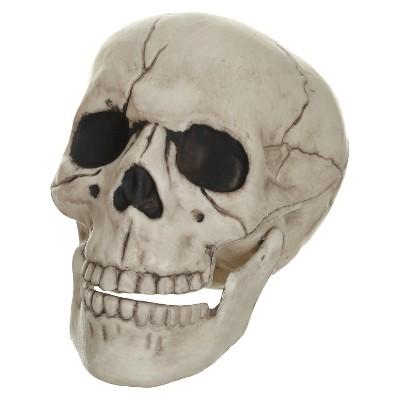 Halloween Posable Skull - Small