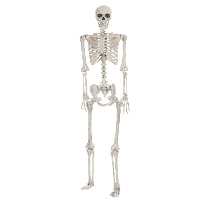 Halloween Posable Skeleton - Lifesize
