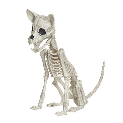 Halloween Chihuahua Skeleton